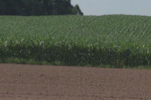 Кредит на сельское хозяйство под залог земли как взять деньги на телефоне в кредит